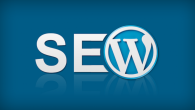 Everything About SEO Services In Brief
